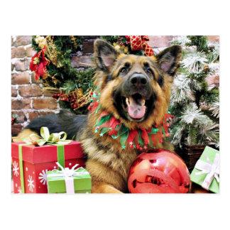 Weihnachten - Schäferhund - Thor Postkarte