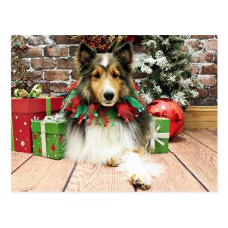 Weihnachten - Sheltie - Herzogin Postkarte