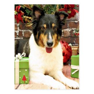 Weihnachten - Sheltie - Lacey Postkarte