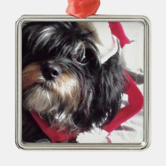 Weihnachten Shih Poo Quadratisches Silberfarbenes Ornament
