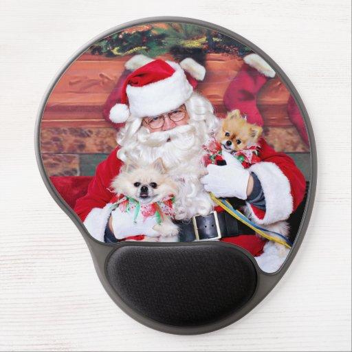 Weihnachten - Spitz - Toby u. Andy