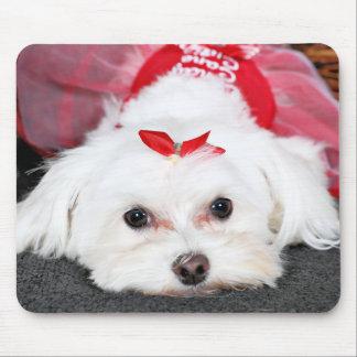 Weihnachten - Tinkerbell - maltesisch Mousepad