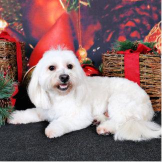 Weihnachten - Toby - Mischzucht Freistehende Fotoskulptur