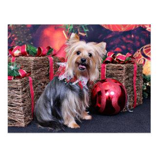 Weihnachten - Yorkie - Abby Postkarte