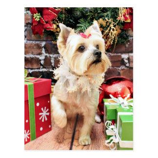Weihnachten - Yorkie - Dorie Postkarte