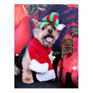Weihnachten - Yorkie - Jake Postkarte