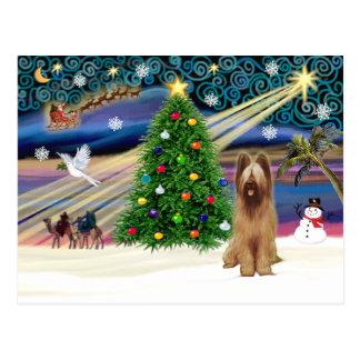 Weihnachtenc$magie-c$briard-kitz Postkarte