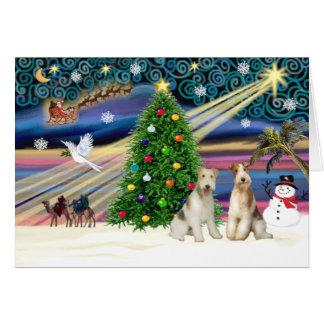 Weihnachtenc$magie-draht Foxterrier PAARE Grußkarte