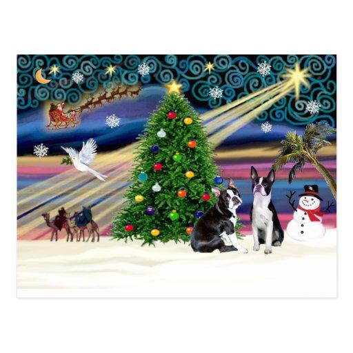 Weihnachtenmagie-c$bostonterrier Paare Postkarten