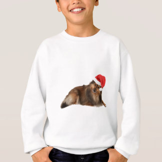 WeihnachtenSheltie Hund Sweatshirt