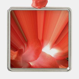 Weihnachts Kaktusblüte Quadratisches Silberfarbenes Ornament