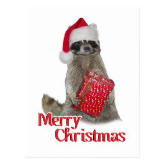 Weihnachtsbandit-Waschbär mit Geschenk Postkarte