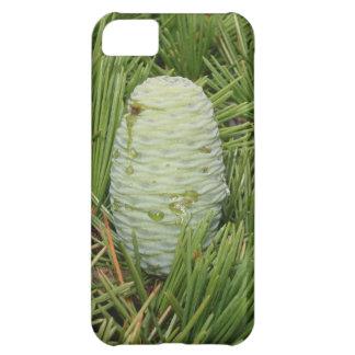 Weihnachtsbaum-Kiefern-Kegel iPhone 5C Hülle