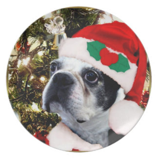 Weihnachtsboston-Terrier Teller