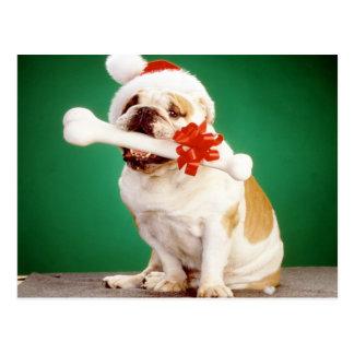 Weihnachtsbulldogge mit Weihnachtshut und -knochen Postkarte