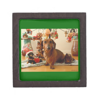 WeihnachtsDackel (Ver. 1) erstklassige Schachtel