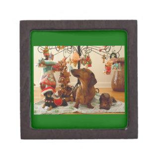 WeihnachtsDackel (Ver. 2) erstklassige Schachtel