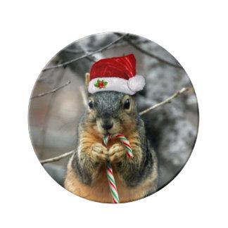Weihnachtseichhörnchen Porzellanteller