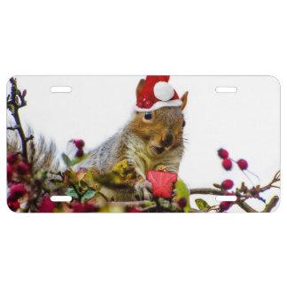 Weihnachtseichhörnchen US Nummernschild