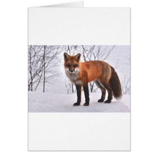 WeihnachtsFox im Schnee Grußkarte