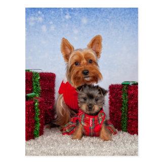 Weihnachtsfreunde Postkarte