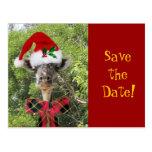 Weihnachtsgiraffe Postkarten