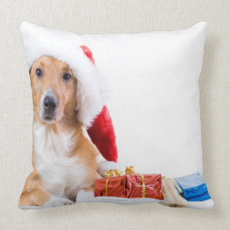 Weihnachtshund mit dem Geweih und den bunten Kissen