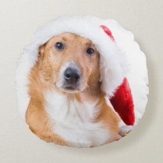 Weihnachtshund mit dem Geweih und den bunten Rundes Kissen