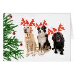 Weihnachtshunde Grußkarte