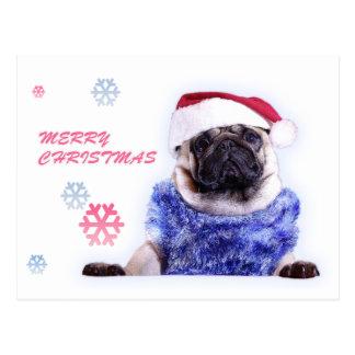 WeihnachtshundeMops in der Weihnachtsmannmütze Postkarte