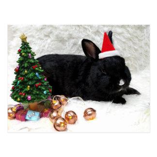 Weihnachtskaninchen Postkarte