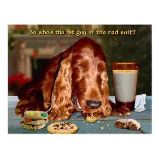 Weihnachtskarte 2012 postkarte