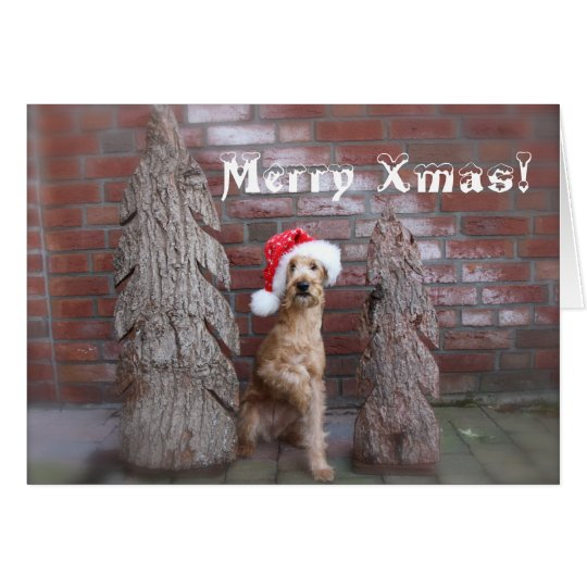 """Weihnachtskarte """"Irish Terrier"""" Karte"""