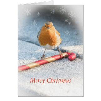 Weihnachtskarte mit Rotkehlchen- u. Karte