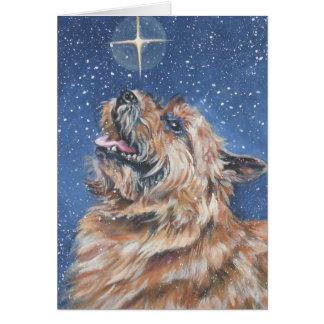 Weihnachtskarte Norwichs Terrier Karte