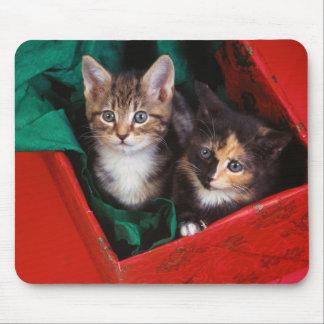 Weihnachtskätzchen Mauspads