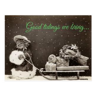 Weihnachtskatze Postkarte
