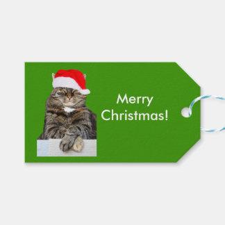 Weihnachtskatzen-Foto im Geschenkanhänger