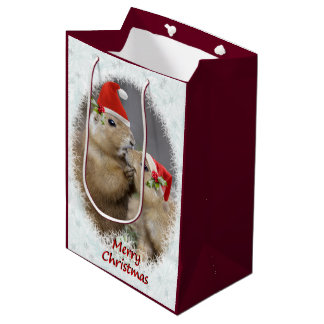 Weihnachtskuss-mittlere Geschenk-Tasche Mittlere Geschenktüte