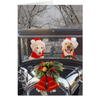 WeihnachtsLabradore im Auto Karte