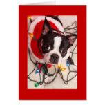 Weihnachtslicht-Sankt-Gruß-Auto Bostons Terrier Grußkarte