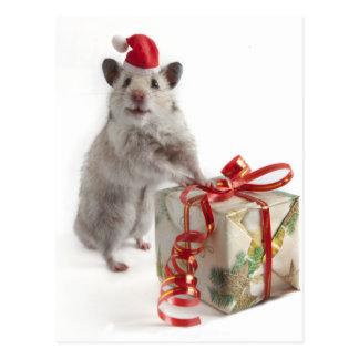 Weihnachtsmann-Hamster mit Geschenk Postkarte