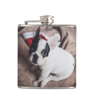 Weihnachtsmann-Hund - lustiger Mops - verfolgen Flachmann