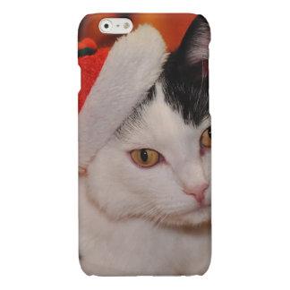 Weihnachtsmann-Katze - frohe Weihnachten - pet
