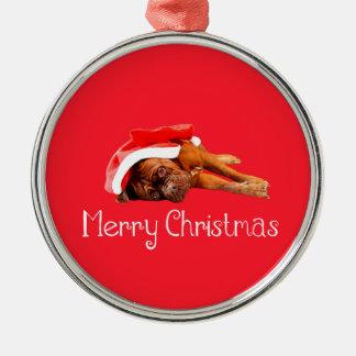 Weihnachtsmannmütze-frohe Weihnachten Dogue De Rundes Silberfarbenes Ornament