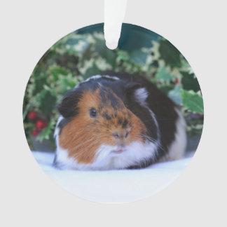 Weihnachtsmeerschweinchen-Verzierung Ornament
