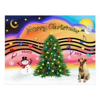 Weihnachtsmusik 2 - Labrador (Gelb) Postkarte