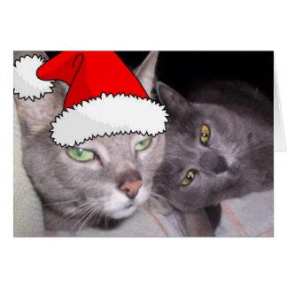 Weihnachtsrussische blaues Grau-Katzen Karte