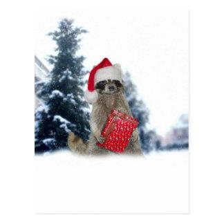 Weihnachtssankt-Waschbär-Bandit Postkarte