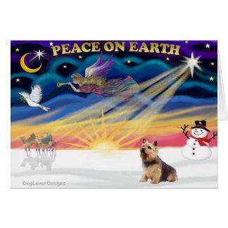 Weihnachtssonnenaufgang - Norwich Terrier Karte